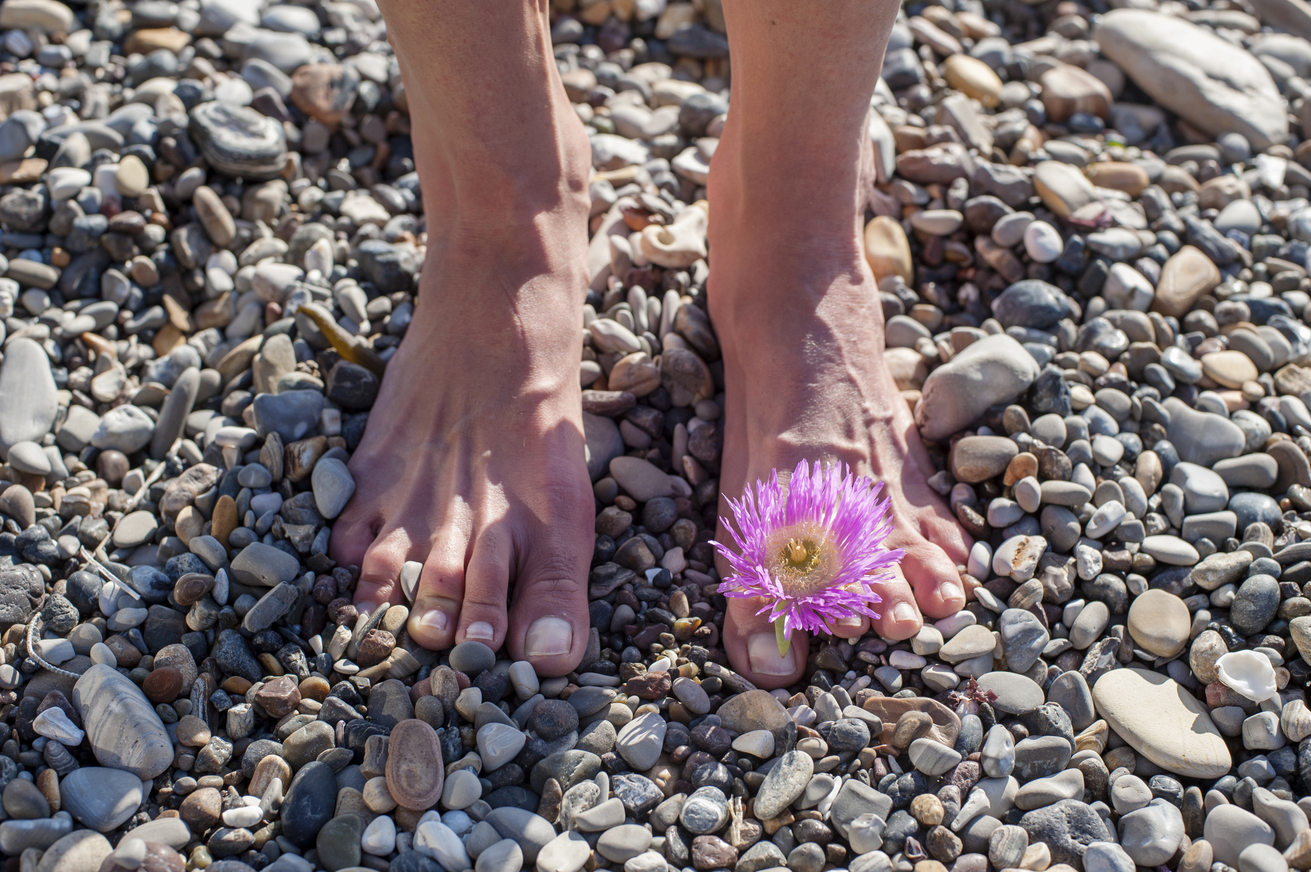 grounding-essential-oil