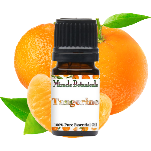 Miracle Botanicals Tangerine Essential Oil with Tangerines